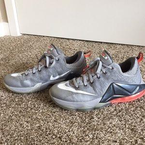 Lebron James Nike Zoom